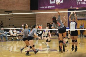 Lady's Varsity Volleyball – Agua Fria @ Washington