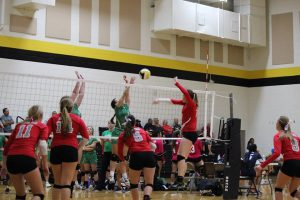 Lady's Volleyball – Agua Fria @ Barry Goldwater Tournament