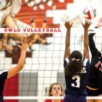 Lady Owls drop critical game to Greenway – West Valley View