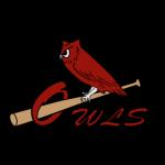 Owls Spring Baseball Camp