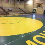 9 placers from the Mohave Invitational