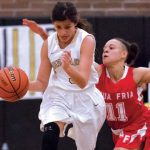 Lady Owls squeak into state tournament – West Valley View