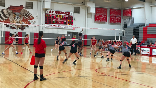 W Volleyball Bounces Back From Opening Loss