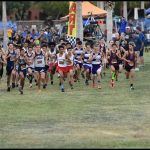 Dysart Dual Meet and Fountain Hills Invitational