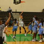 Lady Lions fall to Selma in semifinals