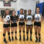 Volleyball Award Winners