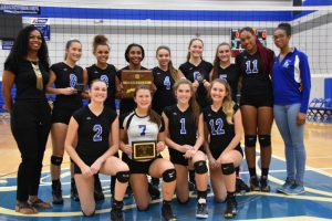 volleyball 2018 district champs