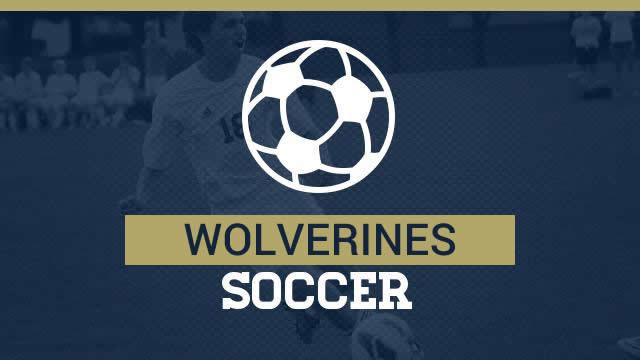 Boys and Girls Soccer Pre-Season Mandatory Personnel Google.doc