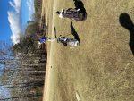Boys Junior Varsity Golf beats North Forsyth 176 – 181