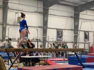 Gymnastics 2-6-19
