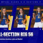 Softball All-Section Teams Announced