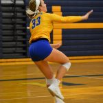 Volleyball vs. Avonworth