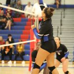 Girls Volleyball Downs Park in Straight Sets