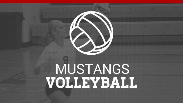 Palmetto Mustangs Volleyball Camp
