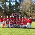 Baseball: Tournament Champions