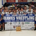 MAT HAWKS TAKE SECOND AT STATE DUALS