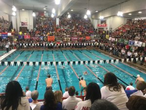 State Swimming- Photo Gallery