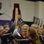 Girls' Volleyball – District Champion