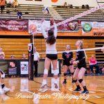 Varsity Volleyball Beats Gulf Coast 2-0