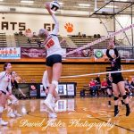Wildcats Rock The Royals in 2 Sets