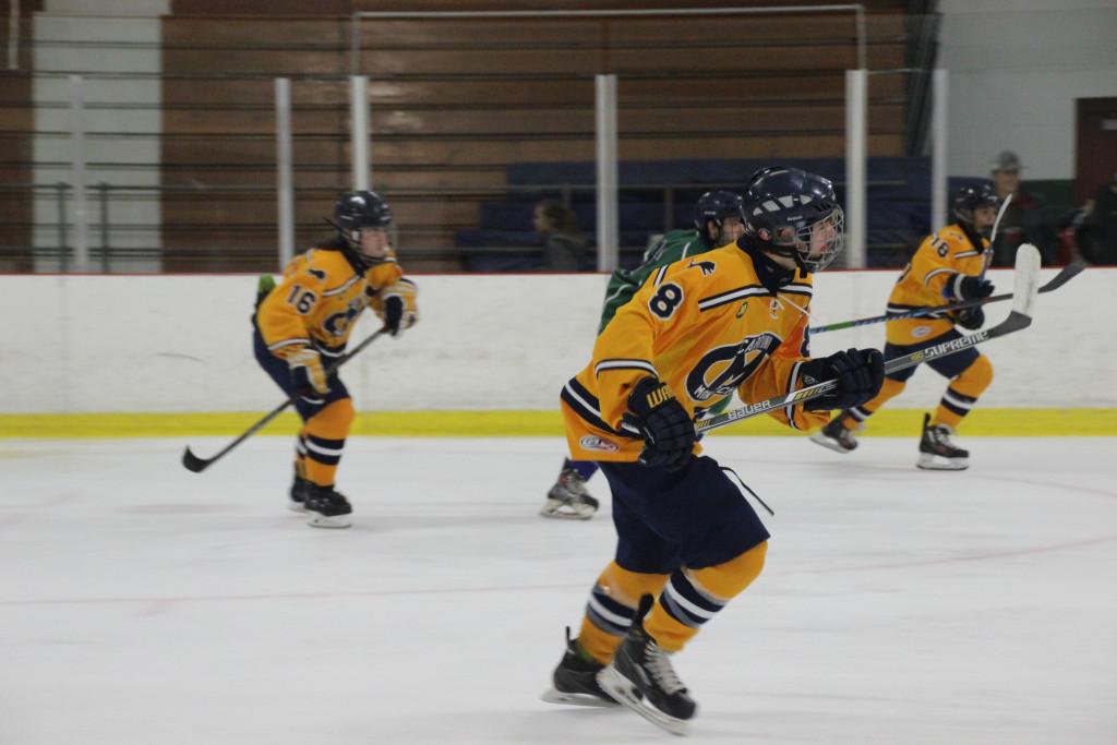 Hockey Wins Season Opener!