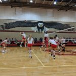 Eagles Soar over Ducks