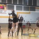 Lady Eagles Find Success at Gatesville Tournament