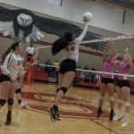 Lady Eagles Fall to Liberty Hill