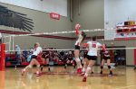 Salado Drops Match to Troy in Four