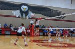 Lady Eagle Volleyball Sweep Lago Vista