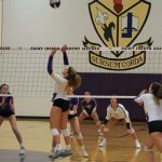 Volleyball Sweeps NDCL