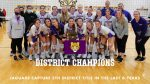 Volleyball Captures District Title