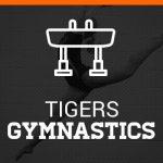 Girls Gymnastics League Championship meet at Wooster