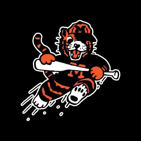 2020 Massillon Tiger Baseball Camp
