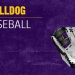JV Baseball vs Adams Central on 4-17