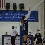 Lions Volleyball Splits Pair on the Road This Week to go to 6-3
