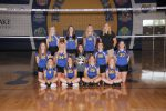 MS Volleyball Teams