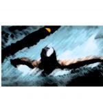 IHSAA Girls Swim Sectional Info Released!