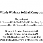 Announcing the 2019 Summer Softball Camp!