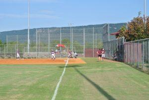 DCHS Softball 2014
