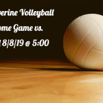 DCHS Girls Volleyball…..Coming Soon!
