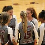 DCHS Volleyball Wins Two