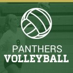 Pelham volleyball players named to All County team.