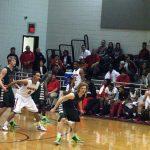 Pelham drops road game to Opelika in state tournament