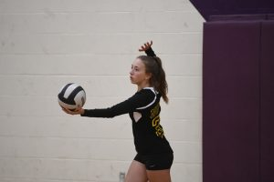 BHSN Volleyball Freshman 2019