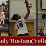 VB: Postseason Accolades Roll In For Lutheran Volleyball