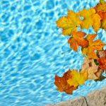 Swimming through Fall Break