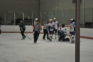 2011-12 Hockey Season