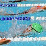 Swim and Dive Summer Activities