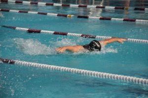 Basha Meet-Swim